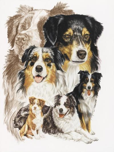 Australian Shepherds-Barbara Keith-Giclee Print
