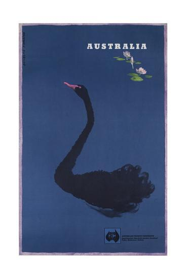 Australian Travel Board Travel Poster, Black Swann, Ca, 1950s--Giclee Print