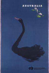 Australian Travel Board Travel Poster, Black Swann, Ca, 1950s