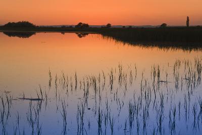 Austria, Burgenland, Ferto National Park, Lake Neusiedl, Scenic View of Lake at Sunset-Rainer Mirau-Photographic Print