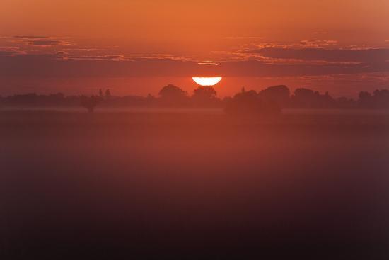 Austria, Burgenland, Neusiedlersee (Lake), Fertš National Park, Sunrise-Rainer Mirau-Photographic Print