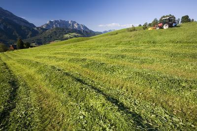 Austria, Styria, Grimming, Ennstal, Mountain-Region, Agriculture, Field Work-Rainer Mirau-Photographic Print