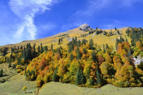 Austria, Tyrol, Autumn-Peter Lehner-Photographic Print