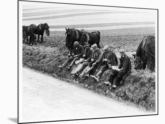 Authentic Ploughman's!--Mounted Photographic Print
