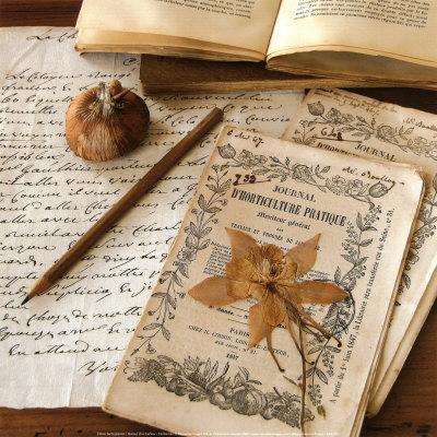 Authour d'Un Herbier-Celine Sachs-jeantet-Art Print