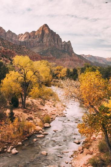 Autmun Virgin River, Zion National Park, Utah-Vincent James-Photographic Print