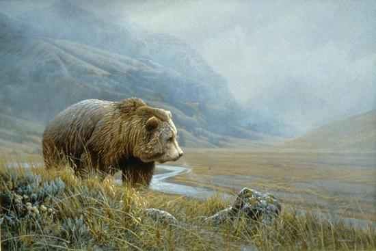 Autumn Ascent Grizzly-Michael Budden-Giclee Print