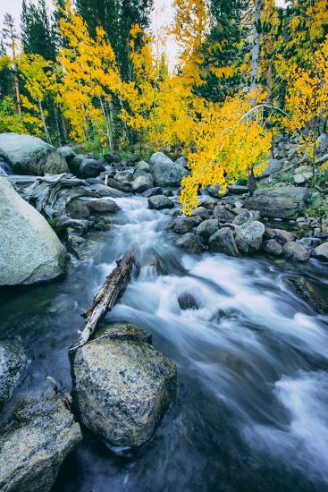 Autumn at Bishop Creek Canyon, Eastern Sierra Mountains, California-Vincent James-Photographic Print