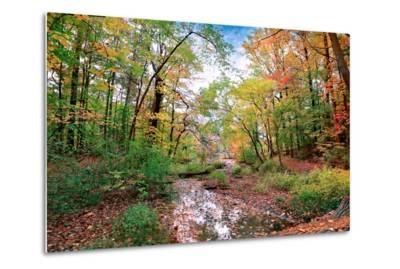 Autumn at Hopkins Pond-John Rivera-Metal Print
