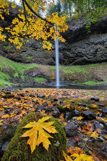 Autumn at South Falls, Silver Falls State Park, Silverton, Oregon-Vincent James-Photographic Print