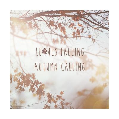 Autumn Calling I-Laura Marshall-Art Print