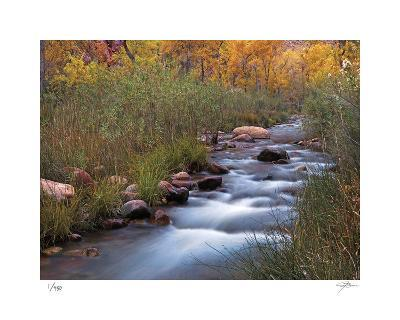 Autumn Color 3-Ken Bremer-Limited Edition