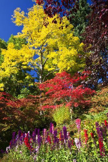 Autumn Color, Butchard Gardens, Victoria, British Columbia, Canada-Terry Eggers-Photographic Print