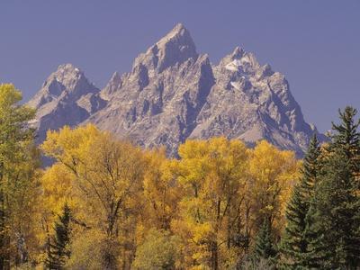https://imgc.artprintimages.com/img/print/autumn-color-in-grand-teton-national-park_u-l-pzl2m80.jpg?p=0