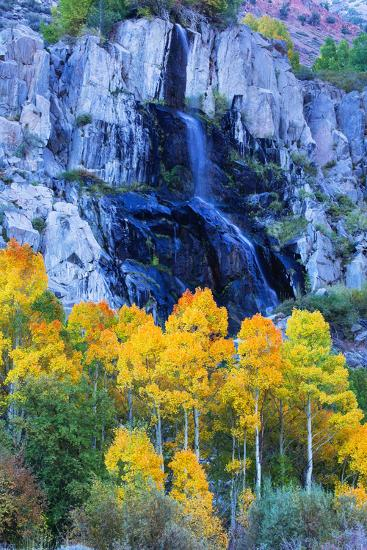 Autumn Color Waterfall Bishop Creek Canyon Eastern Sierras California-Vincent James-Photographic Print