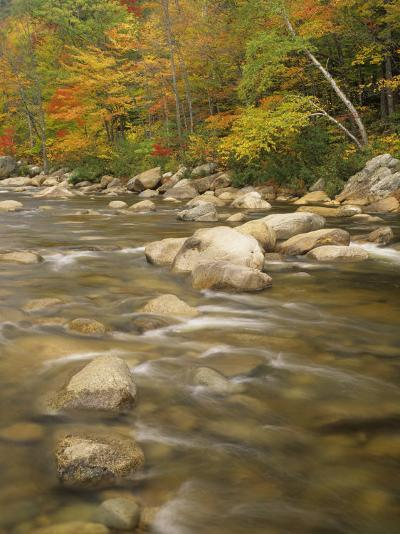 Autumn Colors Along the Swift River, White Mountains National Forest, New Hampshire, USA-Adam Jones-Photographic Print