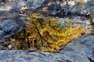 Autumn Colors Reflected in Pools of Water on a Rocky River Bank-Robbie George-Photographic Print