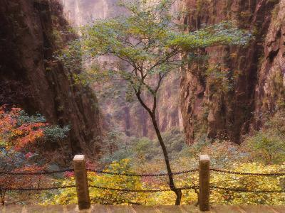 Autumn Colors, Xihai (West Sea) Valley, Mount Huangshan (Yellow Mountain), Anhui Province-Jochen Schlenker-Photographic Print