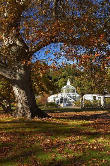 Autumn Colour, Botanic Gardens, Dunedin, Otago, South Island, New Zealand-David Wall-Photographic Print