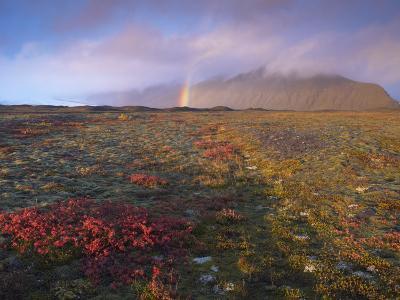 Autumn Colours and Rainbow over Illuklettar Near Skaftafellsjokull Glacier Seen in the Distance-Patrick Dieudonne-Photographic Print