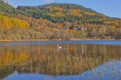 Autumn Colours in the Trossachs, Scotland-Dennis Barnes-Photographic Print