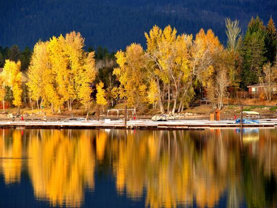 Autumn Colours on Shore of Lake Payette-David Ryan-Photographic Print