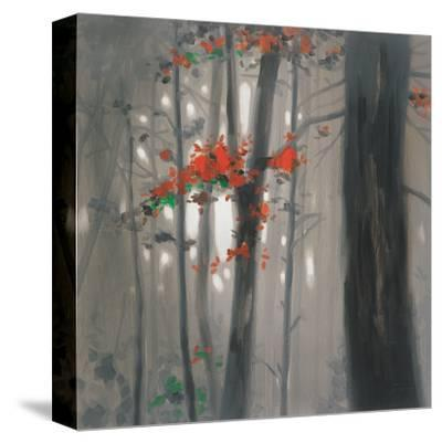 Autumn Embers-Steven Garrett-Stretched Canvas Print