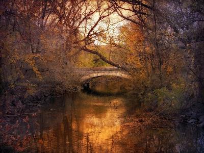 Autumn Finale-Jessica Jenney-Giclee Print