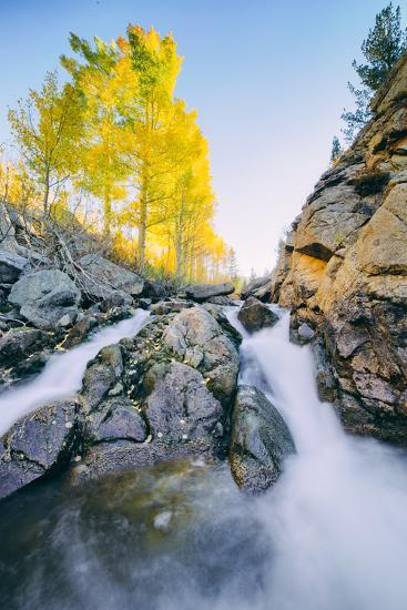 Autumn Flow at Bishop Canyon Creek, Eastern Sierras California-Vincent James-Photographic Print