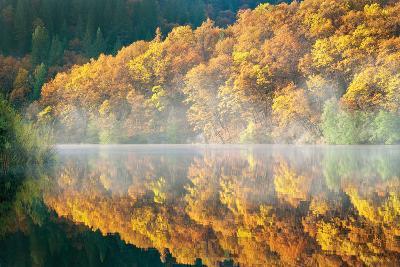 Autumn Fog-Dennis Frates-Photographic Print