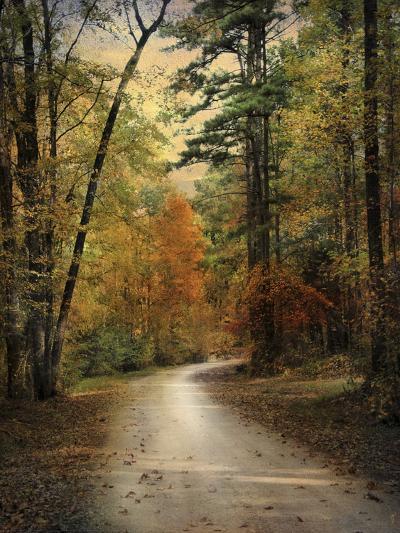 Autumn Forest 4-Jai Johnson-Photographic Print