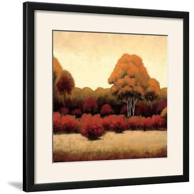 Autumn Forest I-James Wiens-Framed Photographic Print