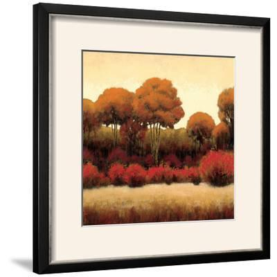 Autumn Forest II-James Wiens-Framed Photographic Print