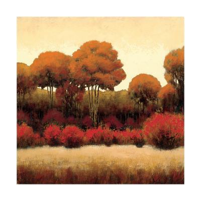 Autumn Forest II-James Wiens-Art Print