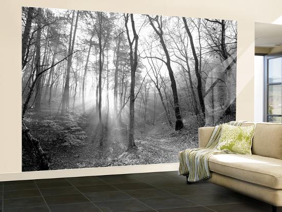 Autumn Forest With Fog And Lights-udvarhazi-Wall Mural – Large