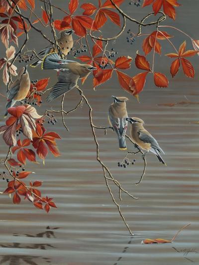 Autumn Harvest - Cedar Waxwing-Wilhelm Goebel-Giclee Print