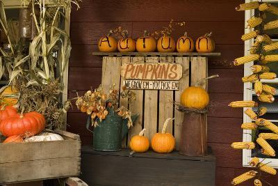 Autumn Harvest III-Philip Clayton-thompson-Photographic Print