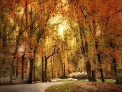 Autumn Impressions-Jessica Jenney-Giclee Print