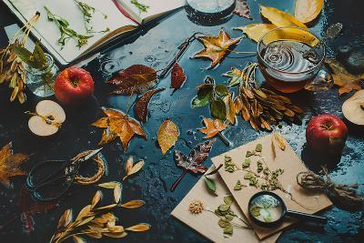 Autumn Inside-Dina Belenko-Photographic Print