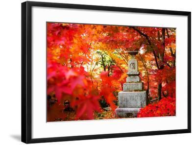 Autumn Japanese Garden with Maple-NicholasHan-Framed Photographic Print