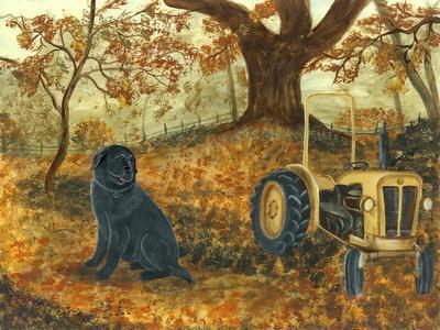https://imgc.artprintimages.com/img/print/autumn-labrador_u-l-pyoa4y0.jpg?p=0