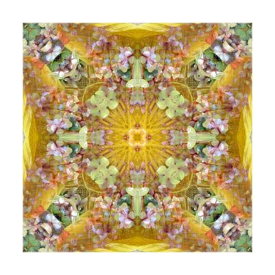 Autumn Leaf Ornament XXVII-Alaya Gadeh-Art Print