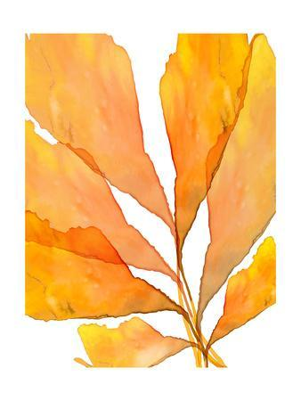 https://imgc.artprintimages.com/img/print/autumn-leaves-3_u-l-q1br6ho0.jpg?p=0