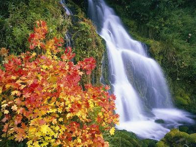 Autumn Leaves by Rushing Waterfall-Craig Tuttle-Photographic Print