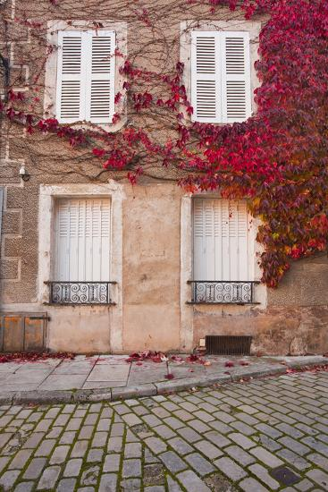 Autumn Leaves in Noyers-Sur-Serein-Julian Elliott-Photographic Print