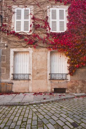 https://imgc.artprintimages.com/img/print/autumn-leaves-in-noyers-sur-serein_u-l-pnp84d0.jpg?p=0
