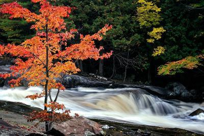 Autumn, Lower Rosseau Falls-David W^ Pollard-Photographic Print