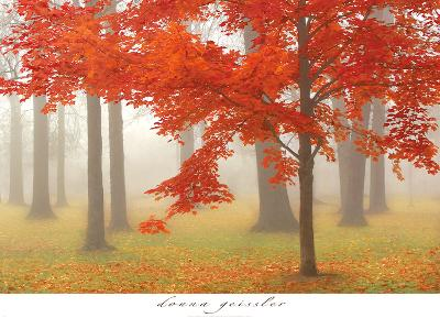 Autumn Mist II-Donna Geissler-Art Print