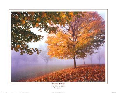 Autumn Mist-Mike Jones-Art Print