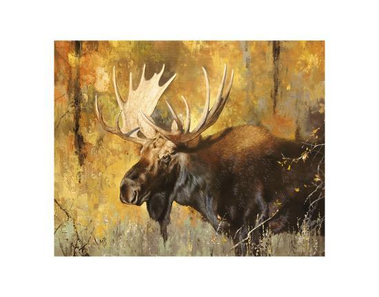 Autumn Moose Study #1-Mark Kelso-Art Print